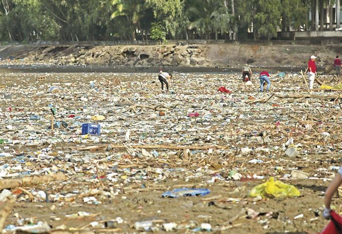 El plástico, principal agresor de los ecosistemas marinos