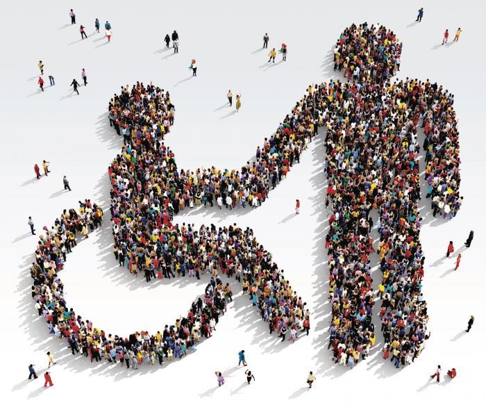La discapacidad en las políticas públicas