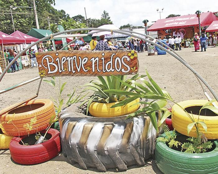 Un festival para promover la conciencia ambiental
