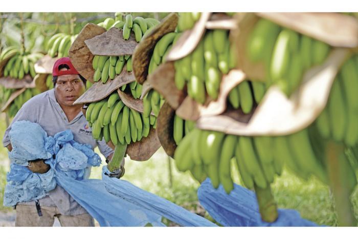 Cepal_proyecta_aumento_en_valor_de_las_exportaciones_y_caida_en_las_importaciones-0