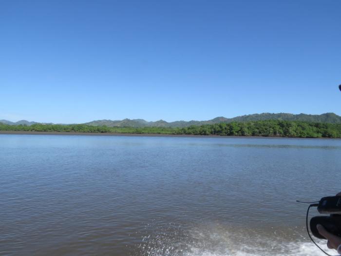 Isla Cañas