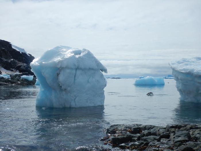 Antártida Chilena