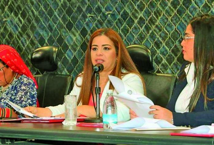 Corina Cano  Abogada Es diputada por el partido Molirena en el circuito 8-7. Tiene un postgrado en mediación y una maestría en derecho comercial.