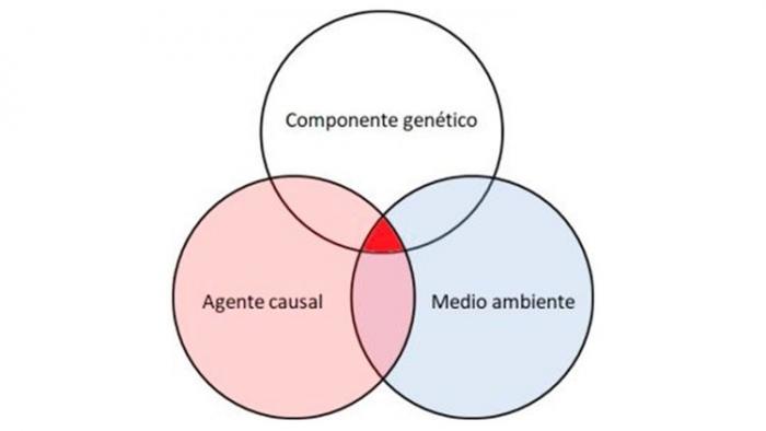 Gráfica de cadenas de contagio
