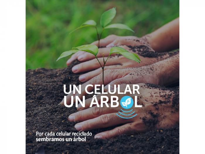 Un Celular, un árbol; Iniciativa integral para la gestión ambiental moderna