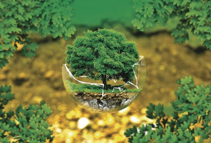 La erosión como agente en la degradación de los suelos