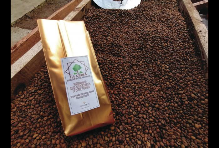 El 'Circuito del café' como una apuesta turística en Coclesito