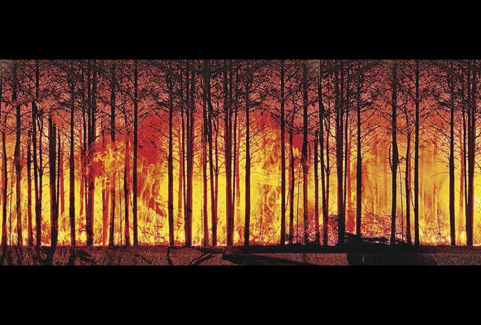 El calentamiento global exige la toma de acciones