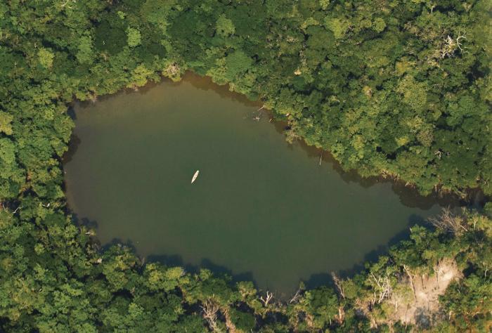 Las alertas de deforestación en la Amazonía caen por segundo mes consecutivo