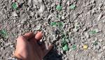 Plástico reciclado de costas y vertederos para pavimentar carreteras en provincias