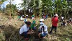Plantan 250 árboles en la cuenca baja del río Divalá