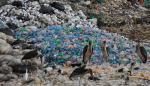 La ONU y National Geographic se unen para alertar del problema del plástico