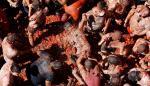 La Tomatina colorea el fin del verano en la localidad española de Buñol