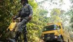 Brasil modifica norma y autoriza uso de fuego para cultivos fuera de Amazonía