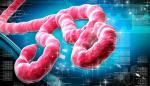 El ébola regresa pero con un posible antídoto