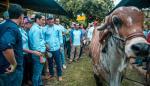 Productores de Azuero se reúnen con directivos de Cambio Democrático