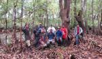 Proyecto de rescate de manglar de David va por premios verde