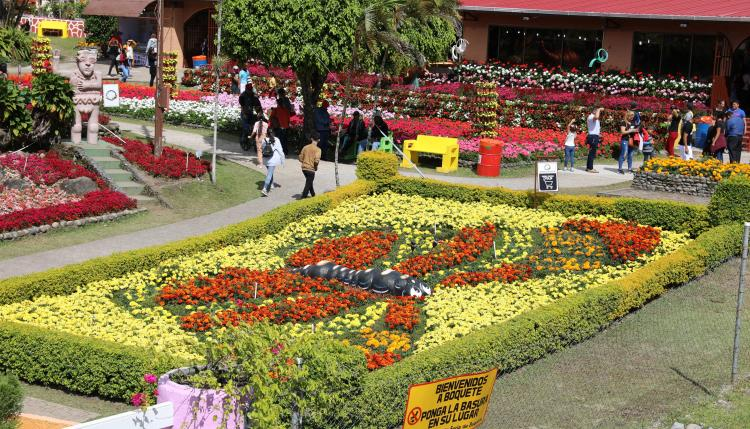 Con los coloridos e ingeniosos arreglos florales inició la edición número 48 de la Feria de las Flores y del Café en Boquete