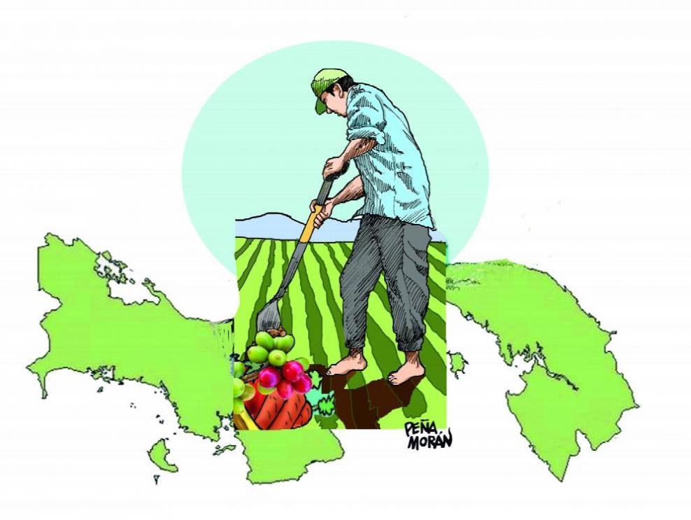 Incentivos para crear más agricultores