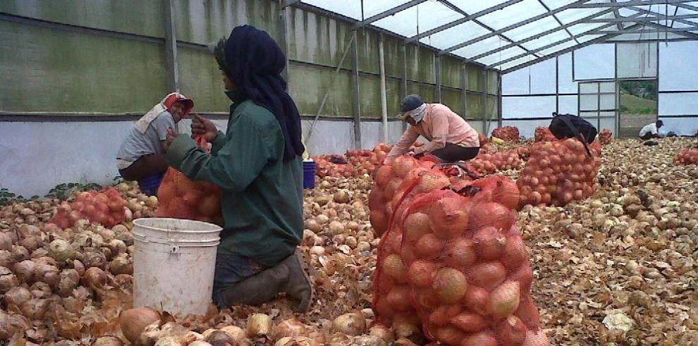 América Latina y Caribe quieren reducir desperdicio de alimentos