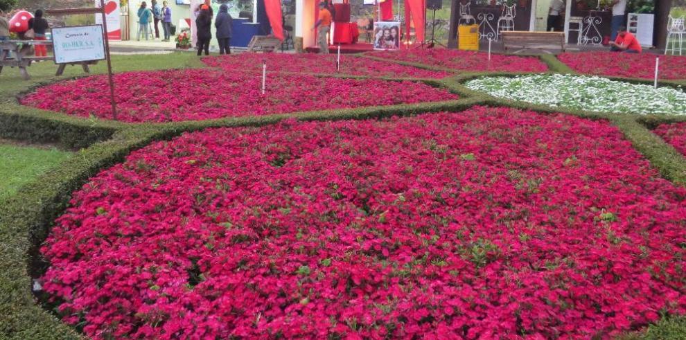 Feria de las Flores y el Café espera superar los 150 mil visitantes