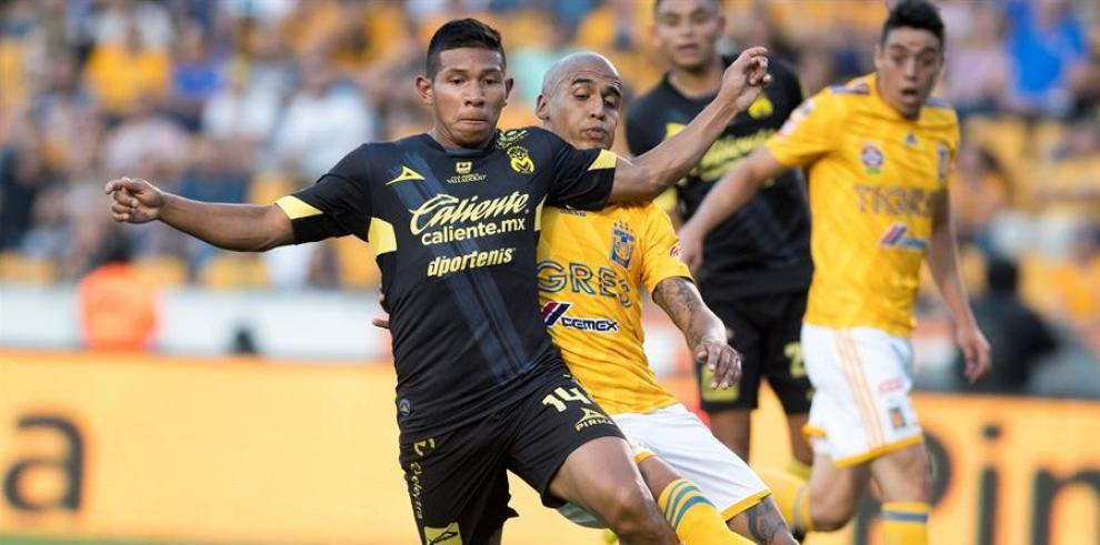 Fútbol mexicano Tigres