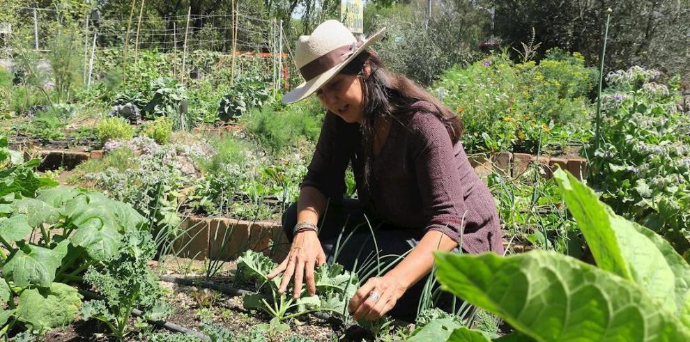 Agricultura familiar México