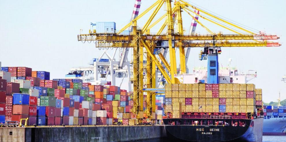 Solo el 2% de la carga contenerizada a nivel mundial es inspeccionada