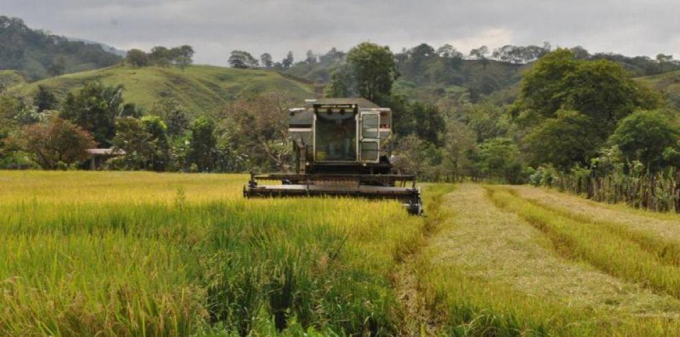 Gobierno pagará $39 millones que adeuda a productores agropecuarios