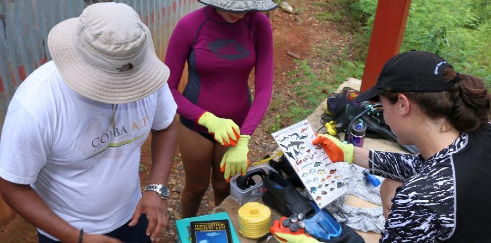 Científicos estudian el ADN de organismos en Coiba