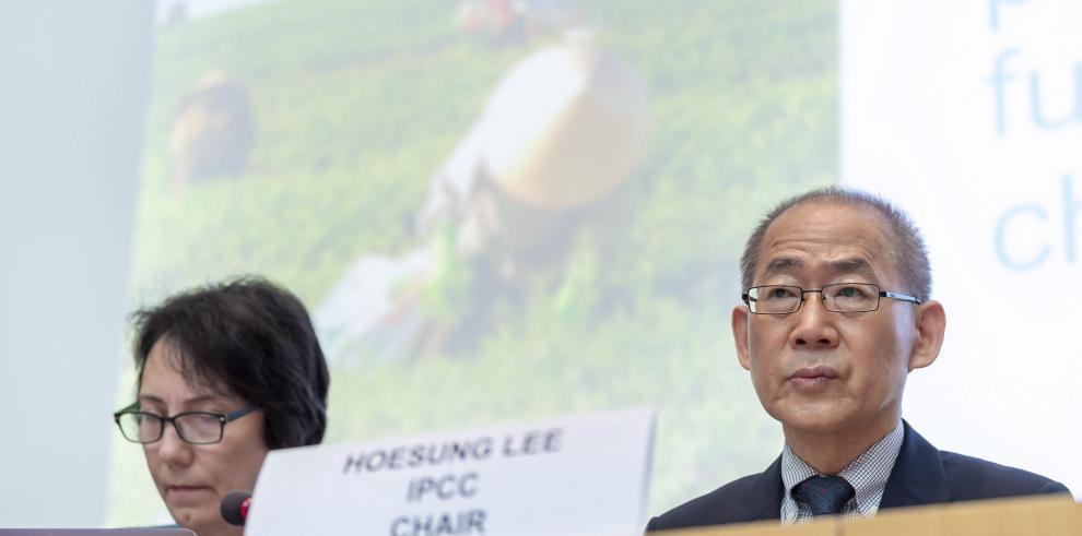 La ONU plantea un nuevo reto a la humanidad: comer mejor para salvar el planeta