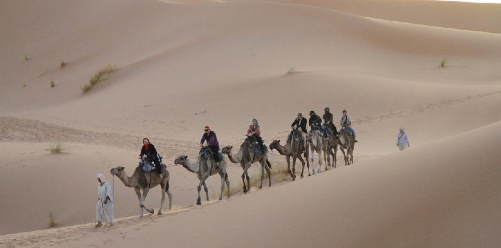 Sahara independiente no es opción, plantea Estados Unidos