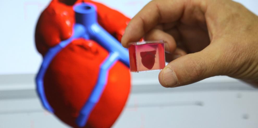 Investigadores hacen con tejido humano en impresora 3D un corazón que palpita