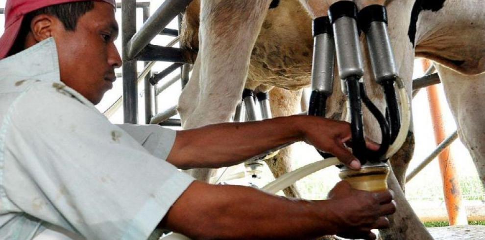 El consumo de lácteos se asocia a menor riesgo de cáncer colorrectal