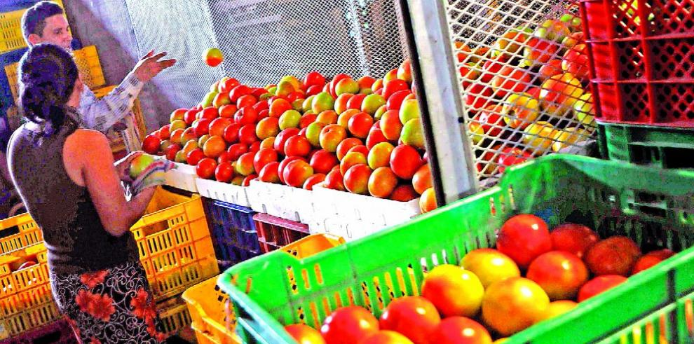 'Los gobiernos deben entender que el agro es el sector clave', Escudero