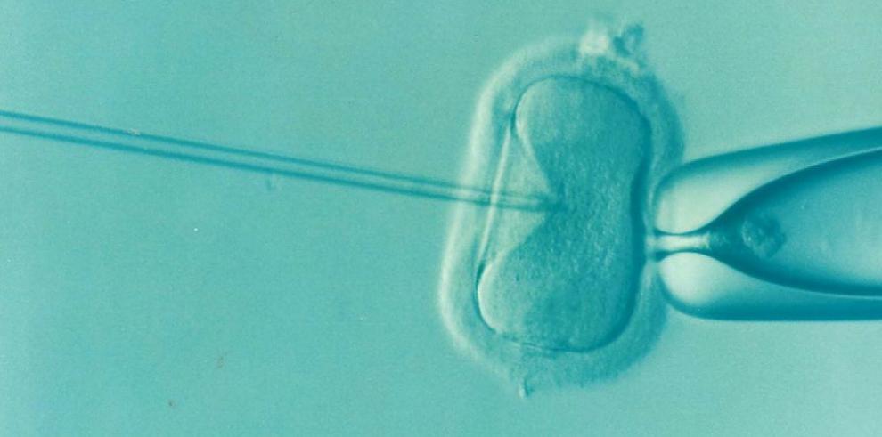 Charla informativa sobre infertilidad