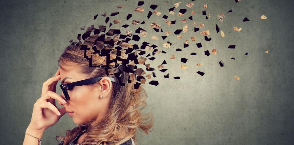 El conocimiento de las funciones de la memoria