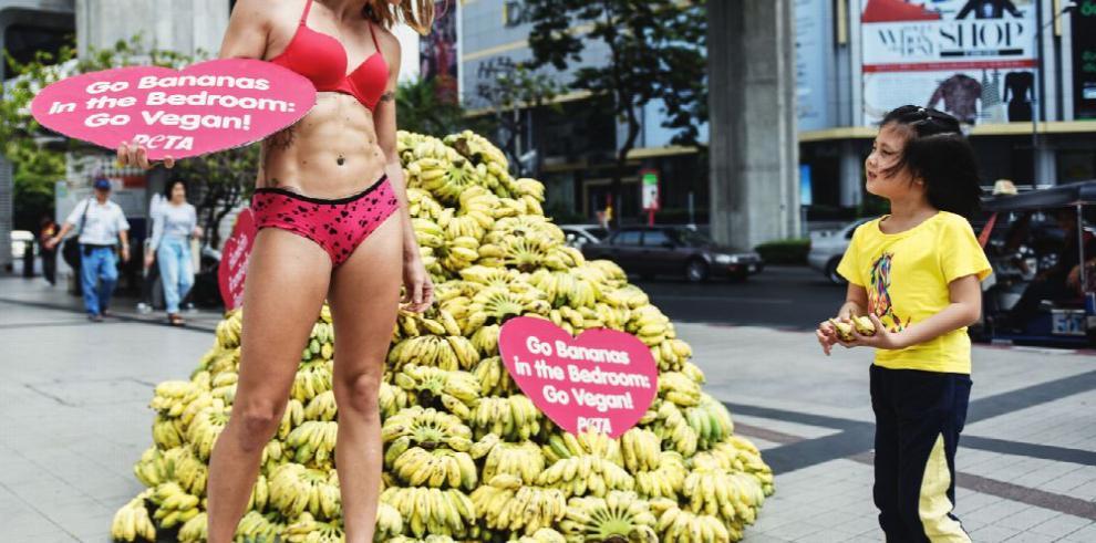 El veganismo en la moda es 'hipocresía'