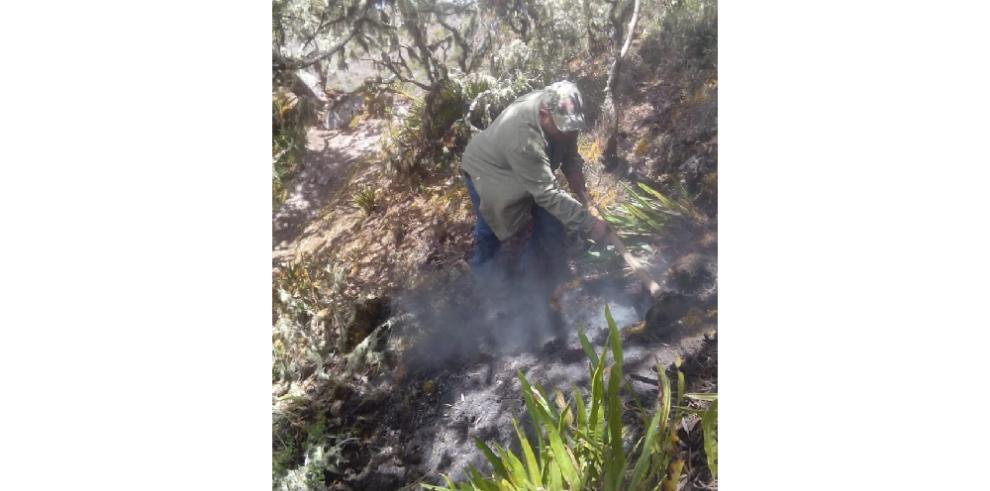 Extinguen incendio de masa vegetal en la cima del volcán Barú