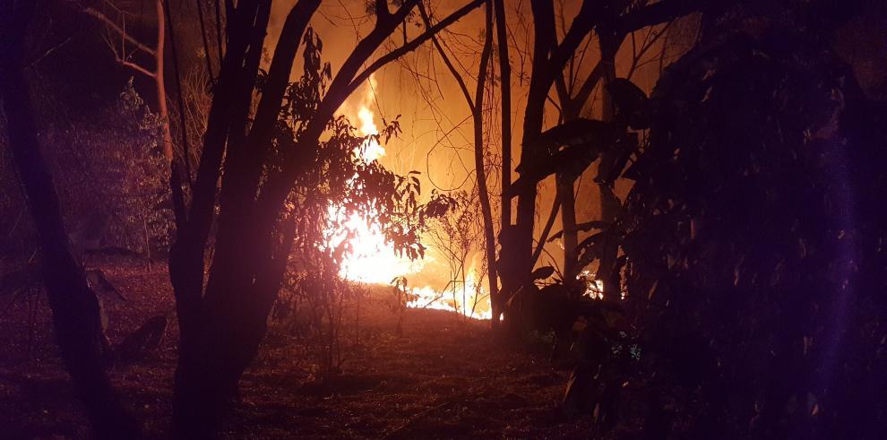 Ancon presenta denuncia por incendio en Punta Patiño