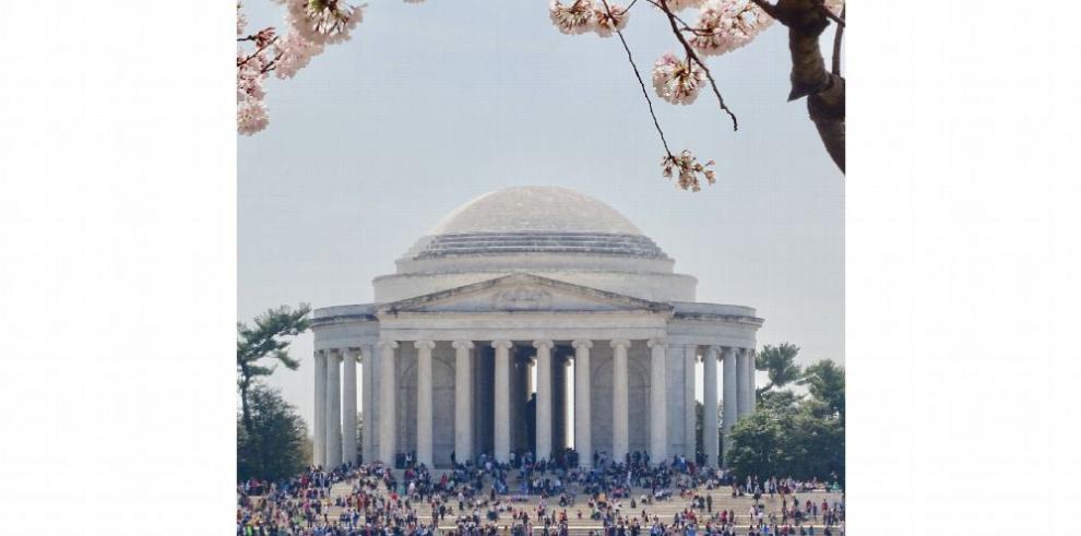 Los monumentos de Washington D.C. entre cerezos en flor