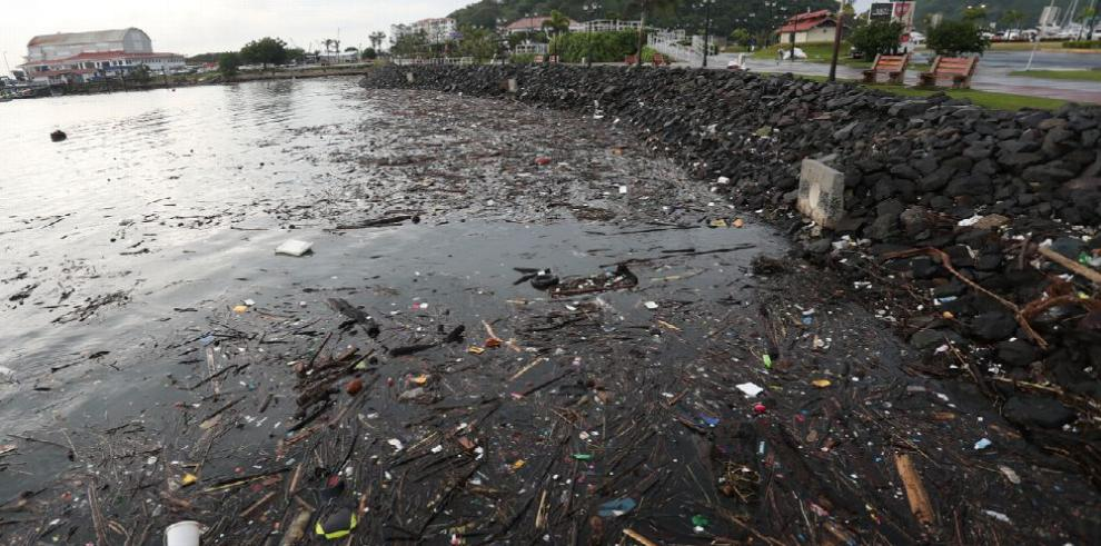 Plástico y basura , 'cáncer' que consume nuestros mares