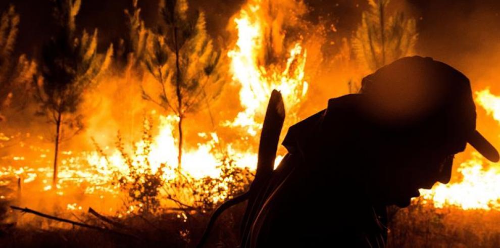Los incendios forestales en Chile ya han arrasado al menos 53.000 hectáreas