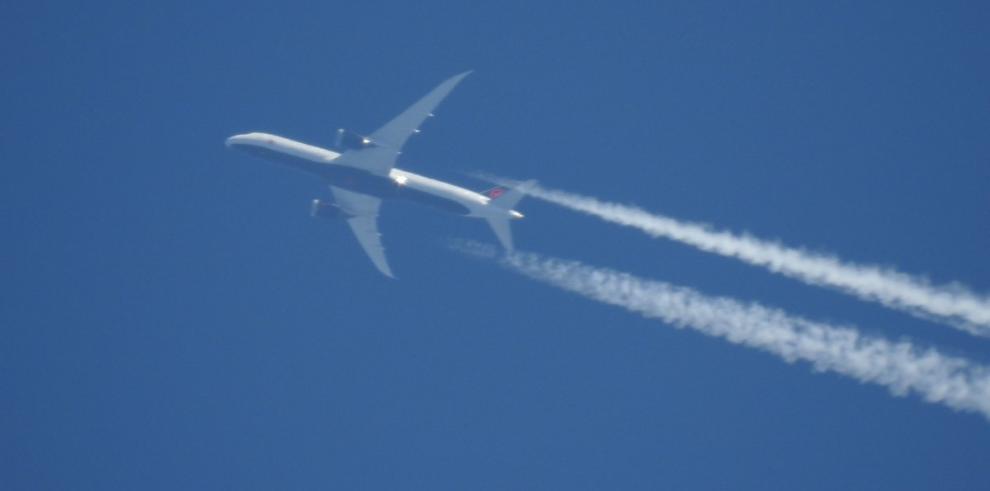 Un Boeing 787 sufre un fallo grave en sus dos reactores al aterrizar en Japón