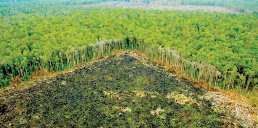 Indígenas piden agua debido a contaminación por derrame en Amazonía peruana