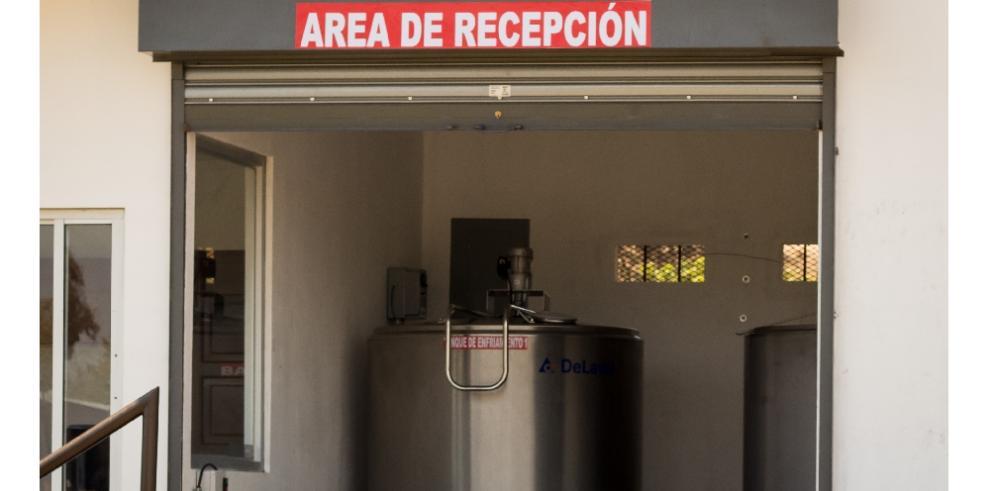 Inicia operación del primer Núcleo de Enfriamiento de Leche Fresca en Los Santos