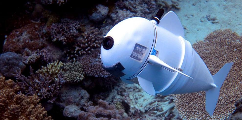 Crean un pez robótico con un sistema vascular sintético