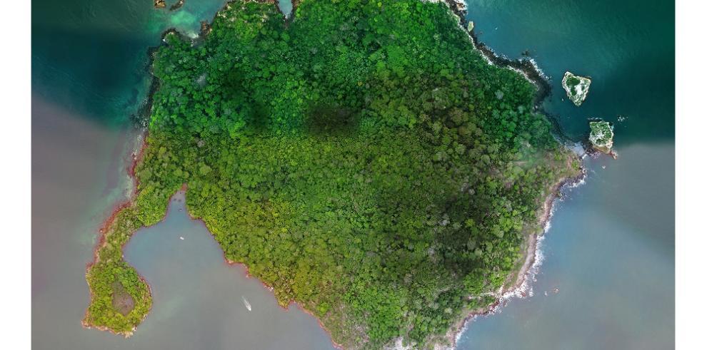 Consejo Económico Nacional deja sin efecto arrendamiento parcial en isla Boná