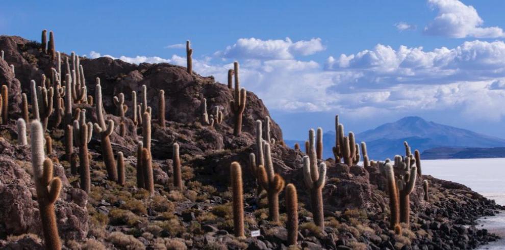 En la Casa de Los Andes