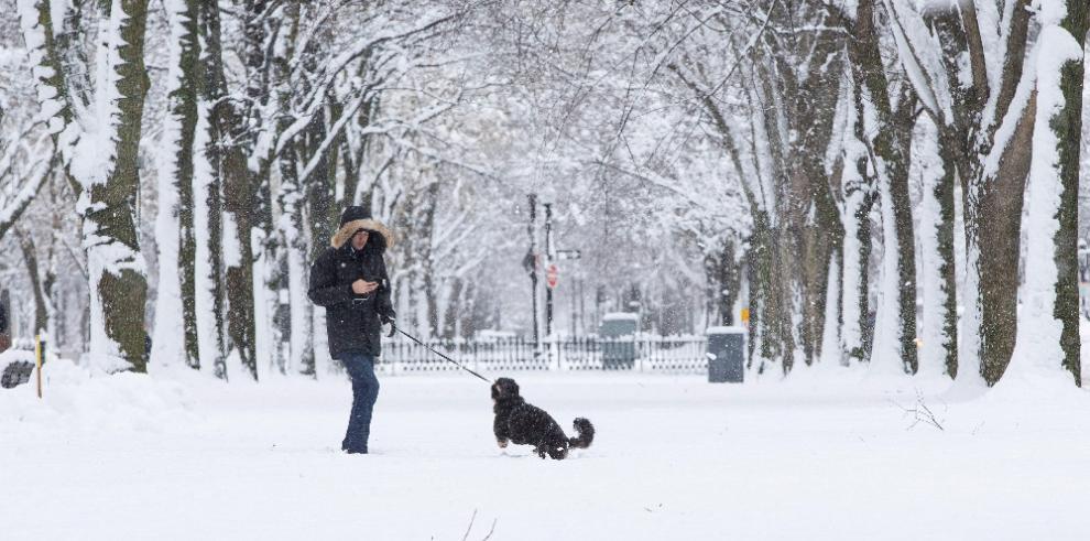 Nueva York y estados cercanos amanecen cubiertos de nieve y cierran escuelas